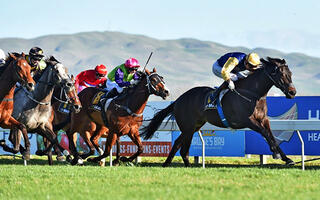 Kawi Brilliant in the Group 1 Makfi Challenge Stakes
